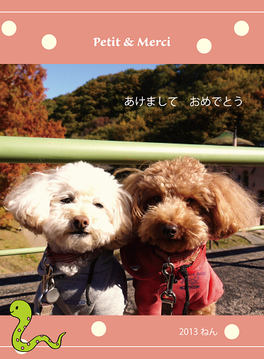 20130101a.png